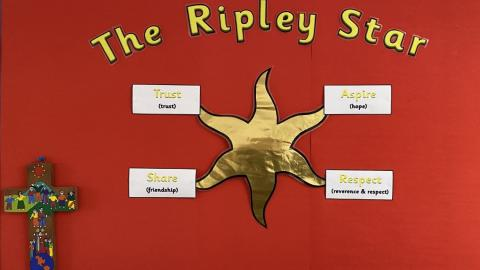 The Ripley Star wall display with Share Trust Aspire Respect at each point
